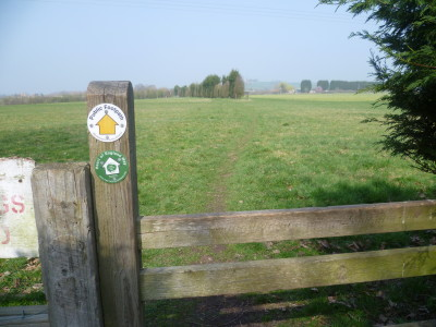 Wixford long dog walk, Warwickshire - Driving with Dogs