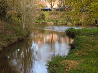 River Weaver dog walk Nantwich, Cheshire - Driving with Dogs