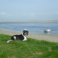 St Valery dog-friendly beach and walk, France - Image 1