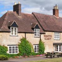A3400 dog-friendly pub and dog walk near Stratford-upon-Avon, Warwickshire - Dog walks in Warwickshire