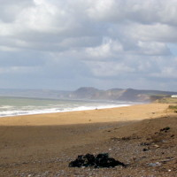 Cogden dog-friendly beach, Dorset - Dog walks in Dorset