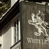 Hampton-in-Arden dog-friendly pub and dog walk, West Midlands - Dog walks in the West Midlands