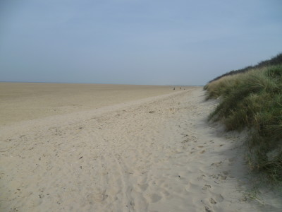 A16 Junction 49 Big sandy beach dog walk, France - Driving with Dogs