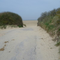 A16 Junction 49 Big sandy beach dog walk, France - Image 3