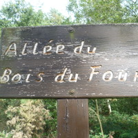 Hunandaye dog walks, France - Image 4