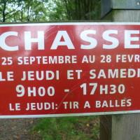 Coetquen Forest dog walk, France - Image 3