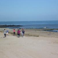 Normandy dog friendly beach, France - Image 2