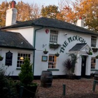 Plough Inn dog-friendly pub in the New Forest, Hampshire