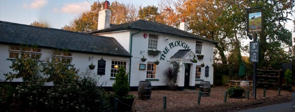 Plough Inn dog-friendly pub in the New Forest, Hampshire - Dog walks in Hampshire