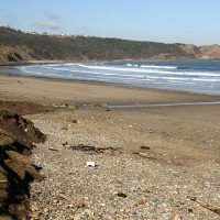 Cayton Bay dog-friendly beach, Yorkshire - Dog walks in Yorkshire