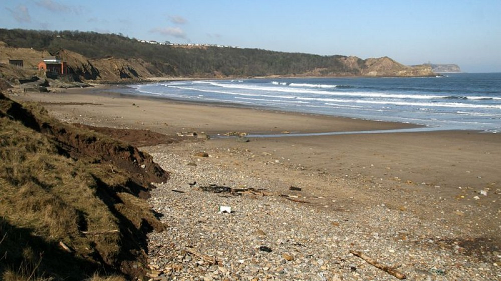 Cayton Bay dog-friendly beach, Yorkshire - Dog walks in Yorkshire