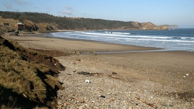 Cayton Bay dog-friendly beach, Yorkshire - Driving with Dogs