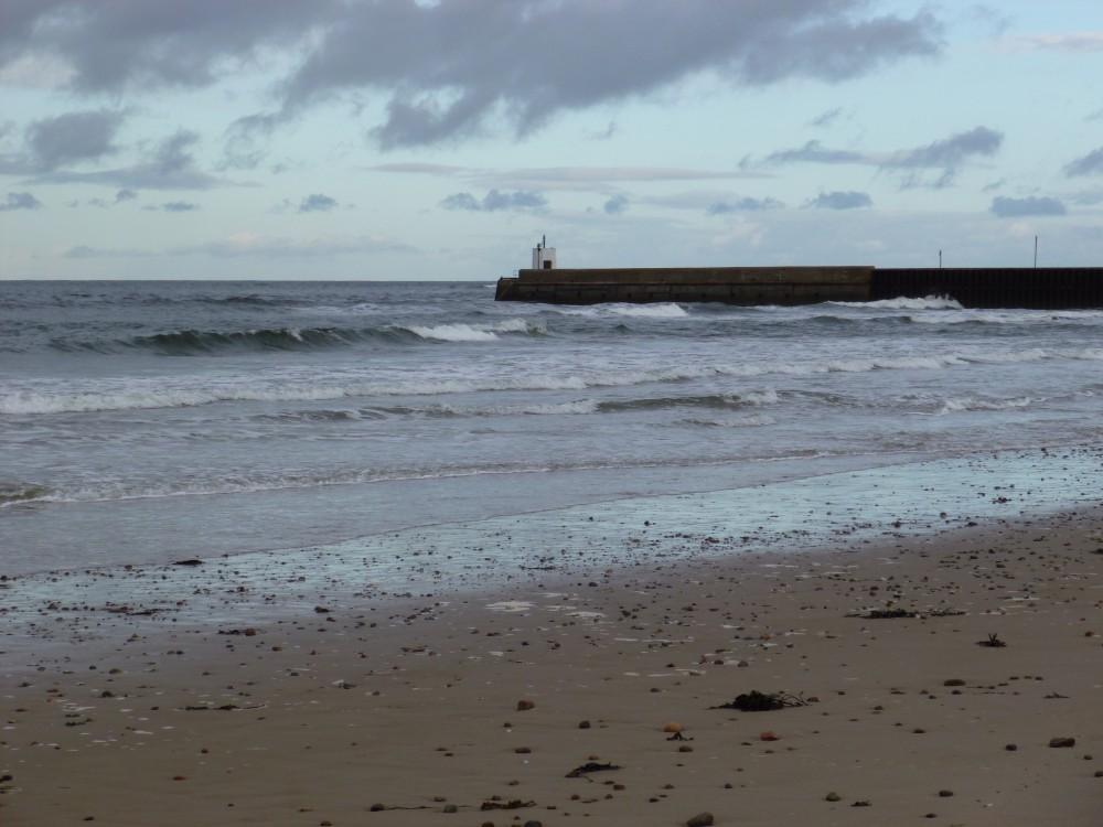 Nairn dog-friendly beach in winter, Scotland - Dog walks in Scotland