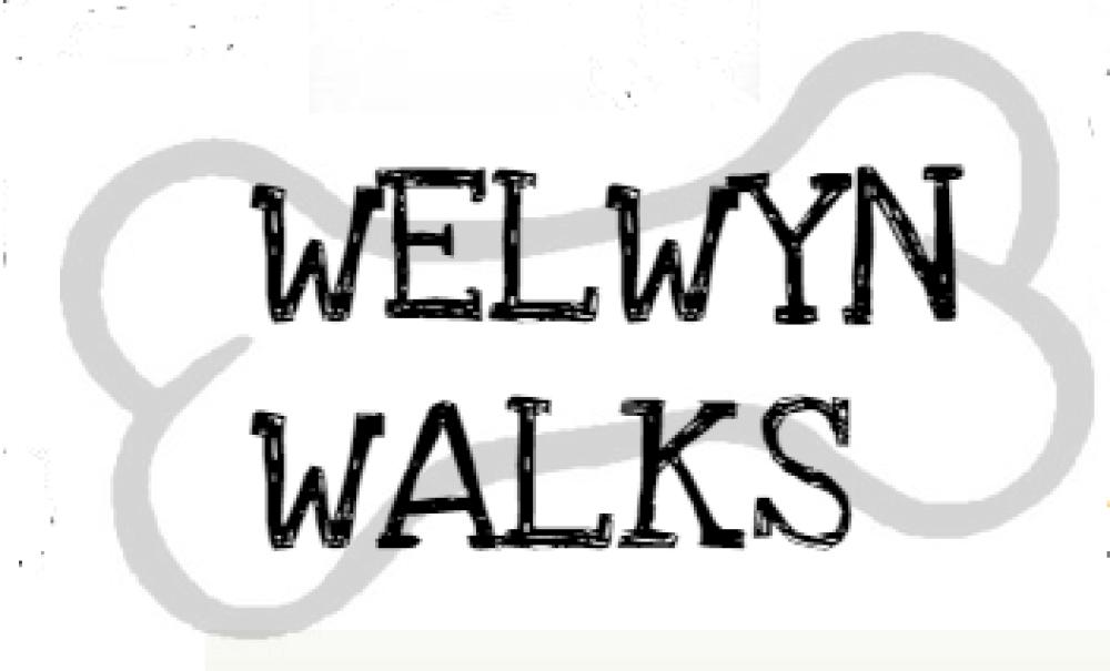 Welwyn Walks, Hertfordshire - Image 1