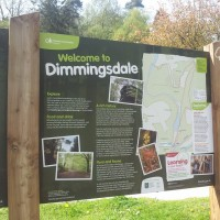 Dimmingsdale dog walks, Staffordshire - Dog walks in Staffordshire