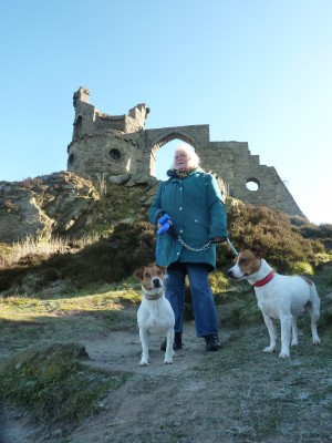 Mow Cop Castle dog walk, Cheshire - Driving with Dogs