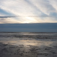 Southport dog-friendly beach, Cheshire - Dog walks in Cheshire