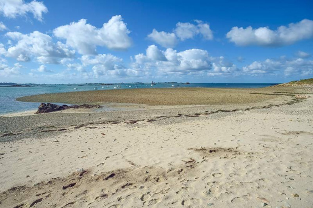 Gréve de Port Béni dog walks, France - France dog-friendly beach