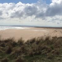 A9 dog-friendly beach at Dornoch, Scotland - Dog walks in Scotland