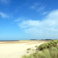 Wells next the Sea dog-friendly beach, Norfolk - Dog walks in Norfolk