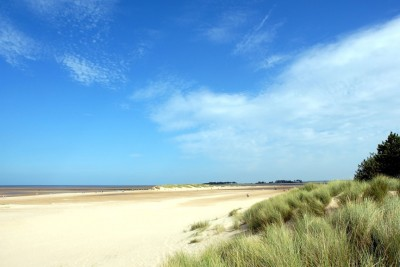 Wells next the Sea dog-friendly beach, Norfolk - Driving with Dogs