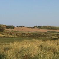 Formby Woods, Merseyside - Dog walks in Merseyside