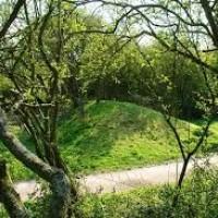 Wat Tyler Country Park dog walk, Essex - Dog walks in Essex