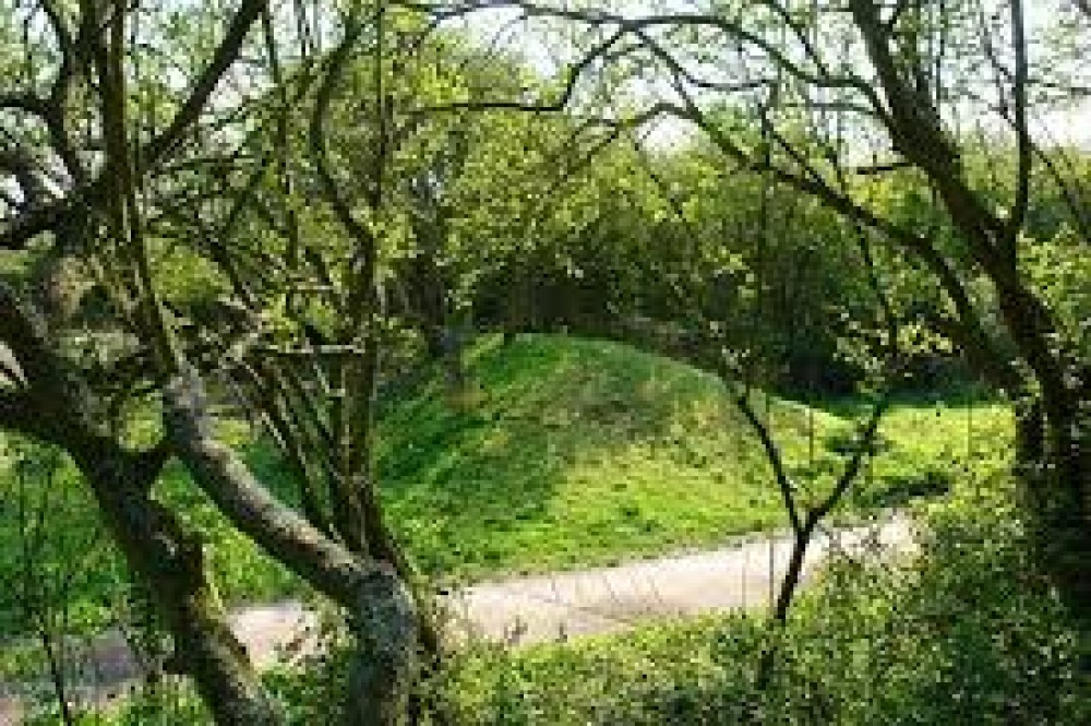 Country Park dog walks - good for families and dogs, Essex - Dog walks in Essex