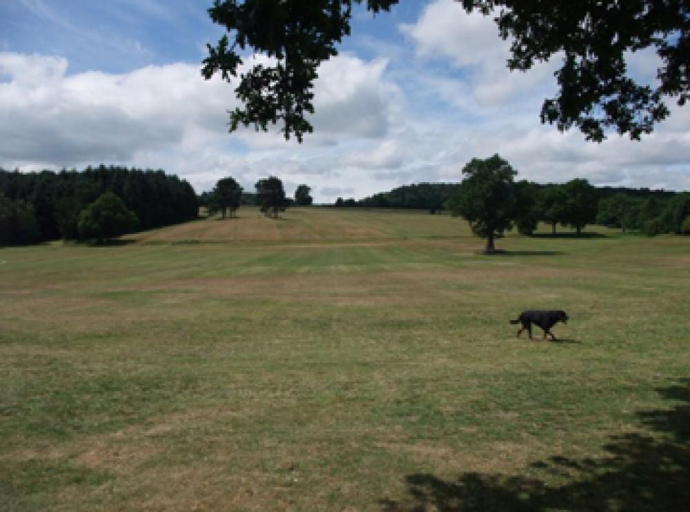 Cofton Park local dog walk, West Midlands - Dog walks in the West Midlands