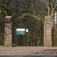 Coldfall Wood local dog walk, Greater London - Dog walks in Greater London