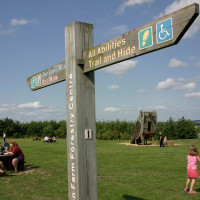 A38 National Forest dog walk with cafe, Staffordshire - Dog walks in Staffordshire