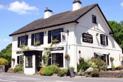 A38 dog friendly pub and dog walk, Devon - Driving with Dogs