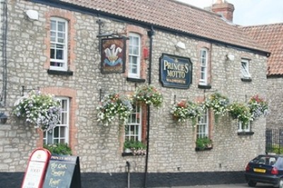 A370 dog-friendly pub and dog walk, Somerset - Driving with Dogs