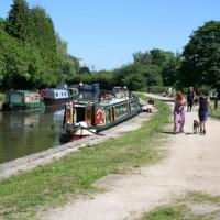 A38 dog-friendly pub and dog walk, Derbyshire - Dog walks in Derbyshire