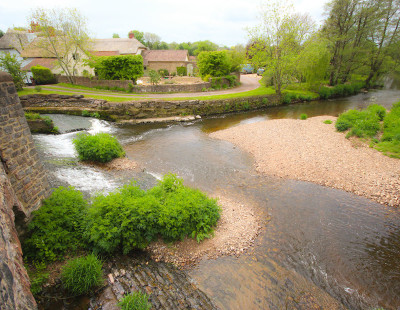A38 dog-friendly pub and river walk near Culmstock, Devon - Driving with Dogs