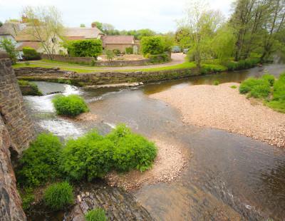 A38 dog-friendly pub and river walk near Culmstock, Devon - Driving with Dogs