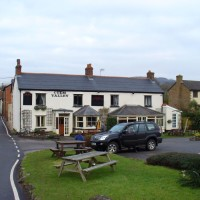 A38 dog-friendly pub and river walk near Culmstock, Devon - Dog walks in Devon