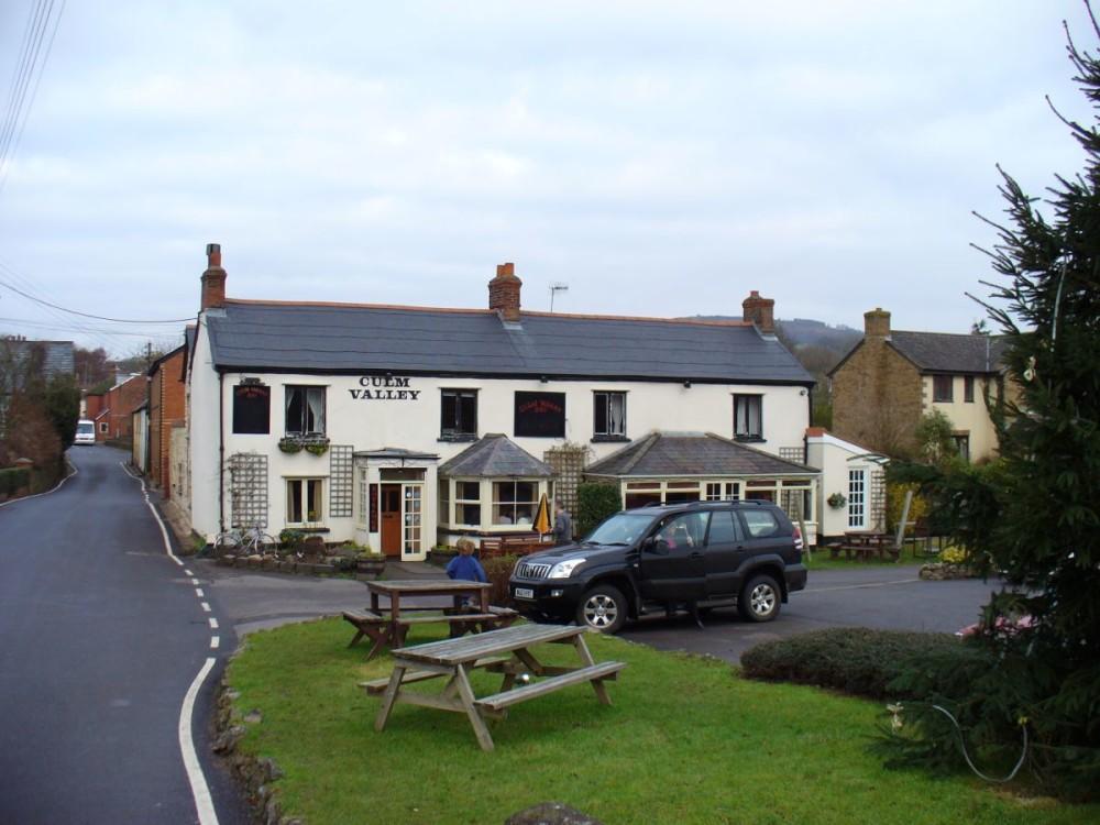 A38 dog-friendly pub and river walk near Culmstock, Devon - Dog walks in Devon