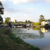 A38 canal towpath dog-walk, Gloucestershire - Dog walks in Gloucestershire