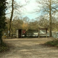 A12 Danbury Country Park doggiestop, Essex - Dog walks in Essex