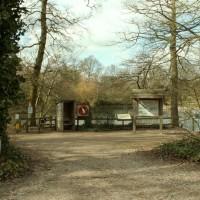 A12 Danbury Country Park doggiestop, Essex - Dog walks in Essex