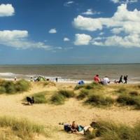 A12 near Southwold dog-friendly pub and dog walk, Suffolk - Dog walks in Suffolk