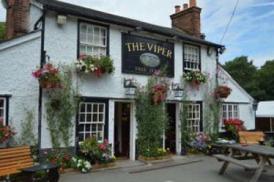 A12 dog walk and dog-friendly pub near Ingatestone, Essex - Driving with Dogs