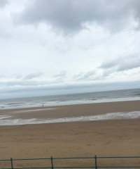 Roker dog-friendly beach and dog cafe, Sunderland - Image 4