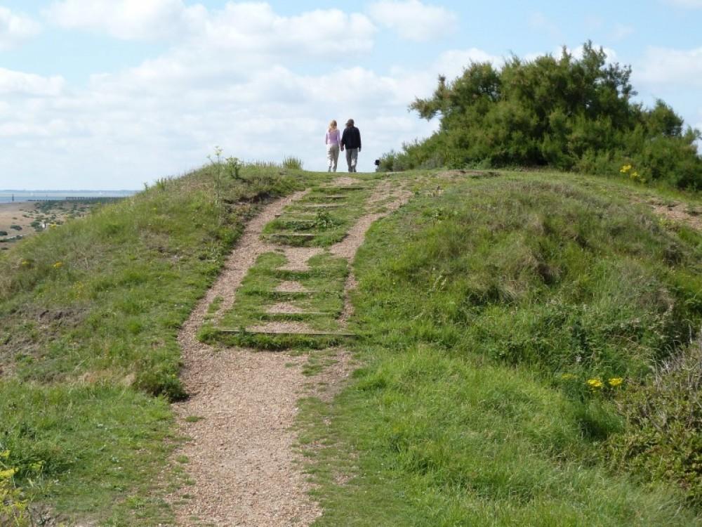 Landguard Reserve dog-friendly beach near Felixstowe, Suffolk - Dog walks in Suffolk