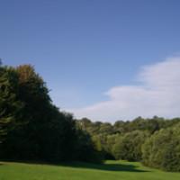 Jesmond Dene - Image 2