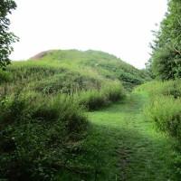 Thetford Castle and dog walk, Norfolk - Dog walks in Norfolk