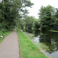 Little Ouse dog walk, Thetford, Norfolk - Dog walks in Norfolk