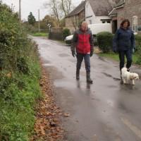 A31 dog-friendly inn and dog walk, Dorset - IMG_6203.JPG