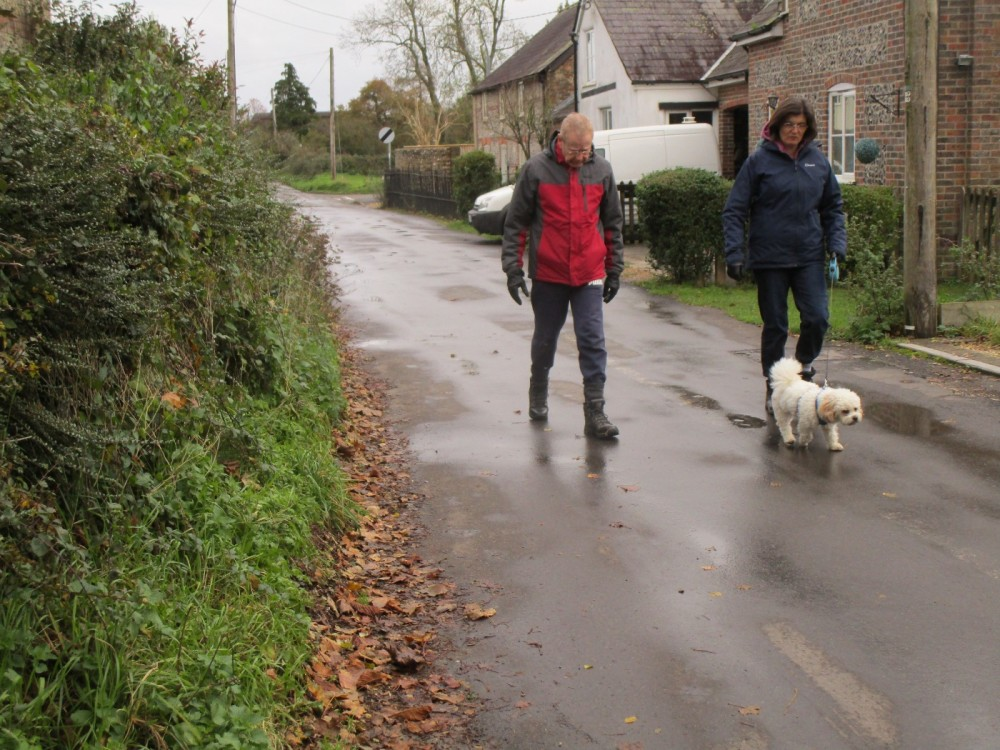 A31 dog-friendly inn and dog walk, Dorset - IMG_6203.JPG